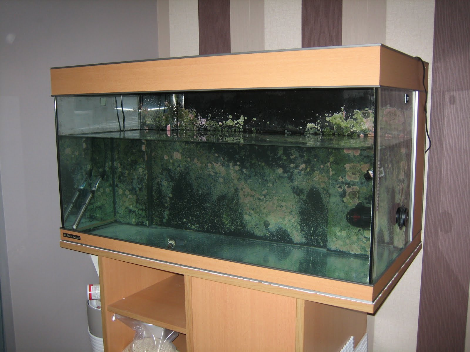 Aquarium fish tank in chennai - Above Kit Is Aqua Medic Percula I Have 2 From Both Sides That Concerns Me But If You Look At The Picture You Will See More Than 2 Overhang With A 120g