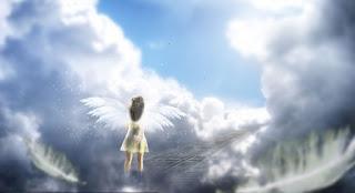 dolce stil novo e donna angelo