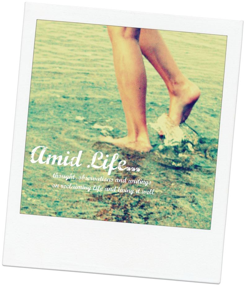 Amid Life