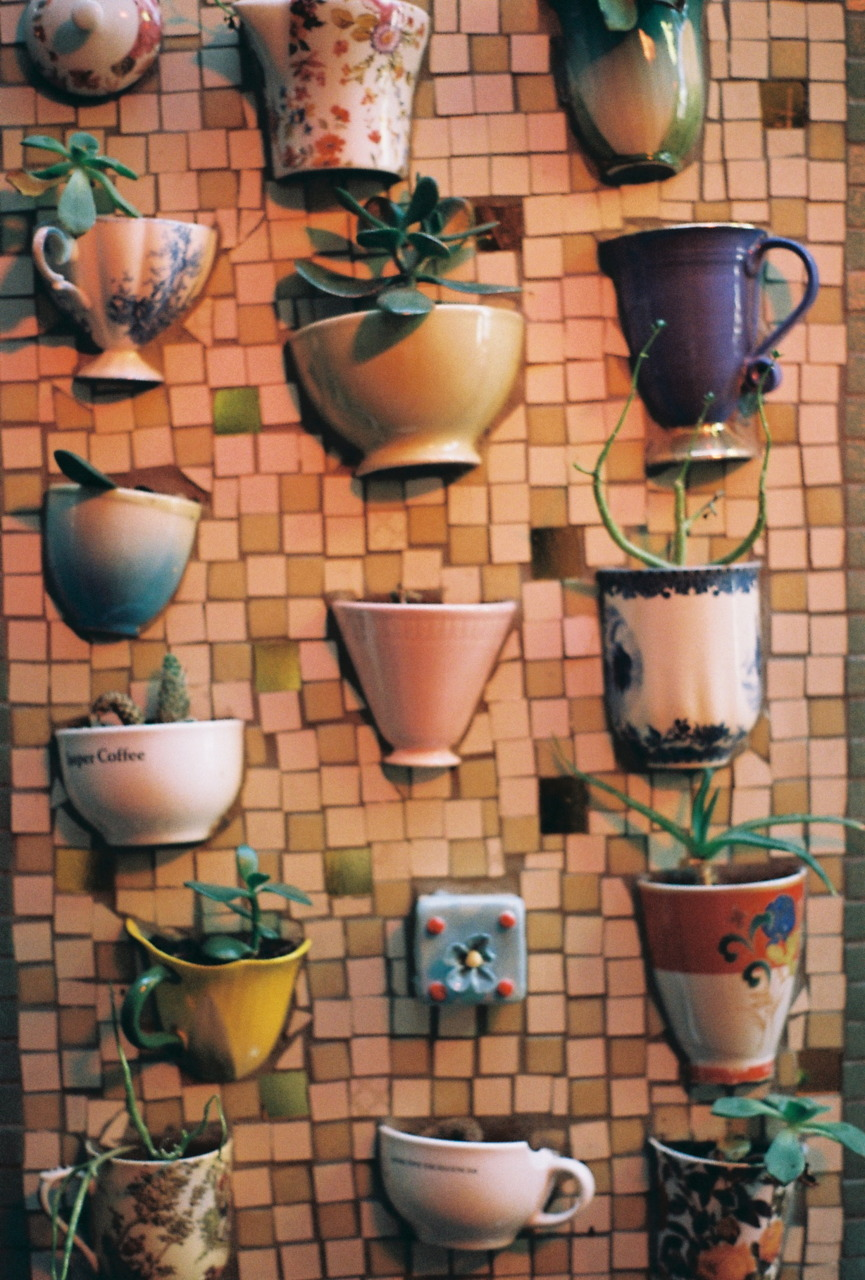 Wall Mosaic Designs : Mosaic wall with embedded teacups for succulents