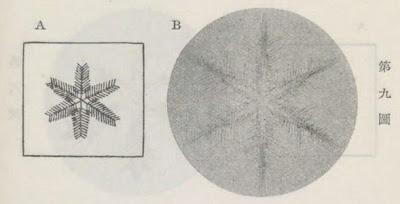 『雪華図説』の研究 模写図と顕微鏡写真と比較 第九図