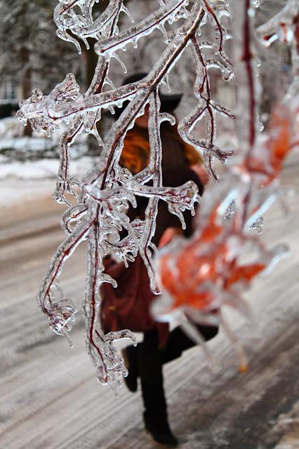 #iceraintoronto #icestormtoronto #icestormto