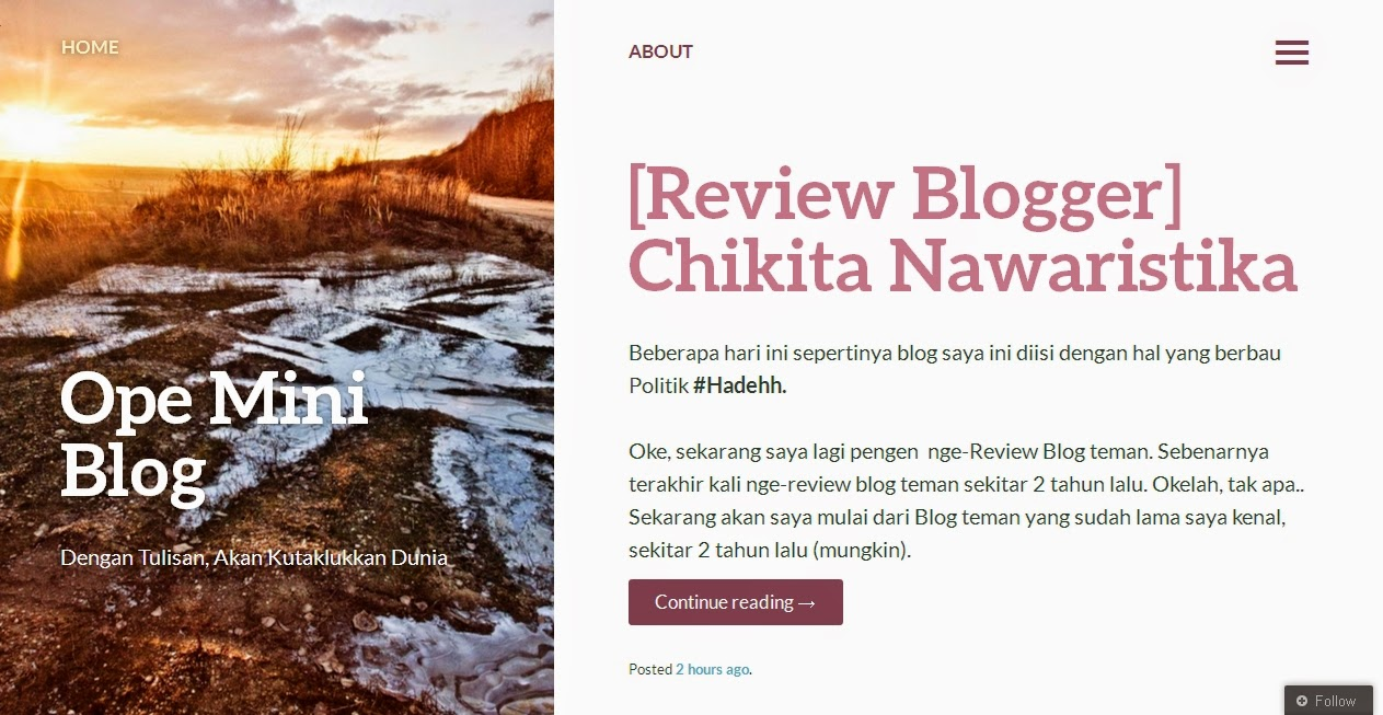 REVIEW CHIKITA NAWARISTIKA