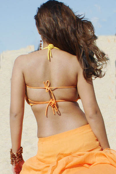 Nayanthara Sex Photos http://entertainmentcelebritiesmoviesmusic.blogspot.com/2011/04/nayanthara-back-dress.html