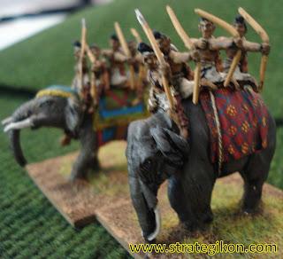 Elephants #1