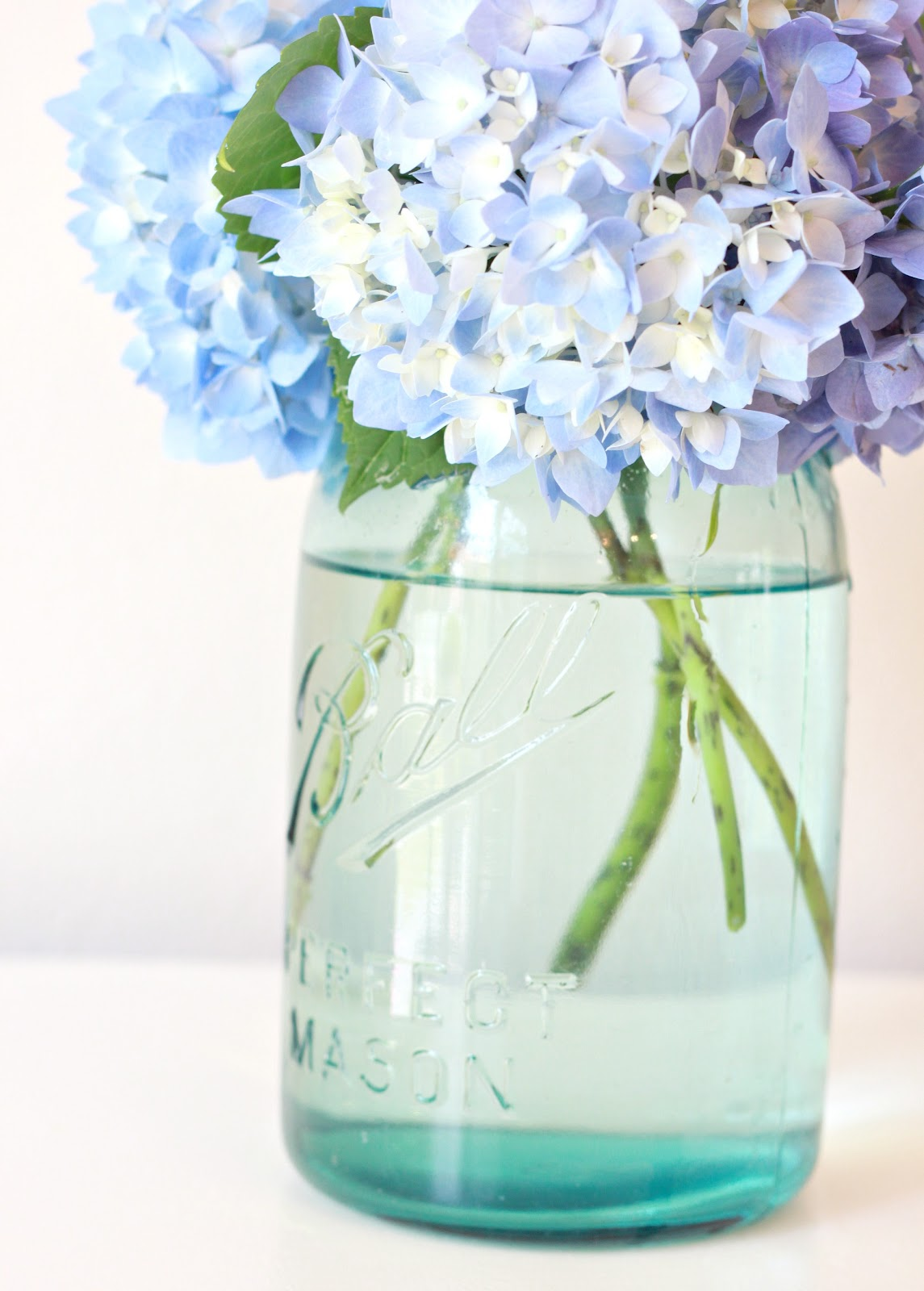 Tip to Keeping Cut Hydrangeas Looking Fresh.... - Love of Family & Home