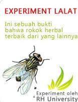 RH University Experiment