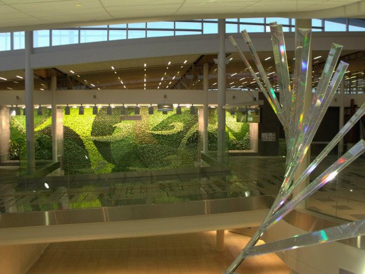 Allpe medio ambiente blog un muro for Jardin verde