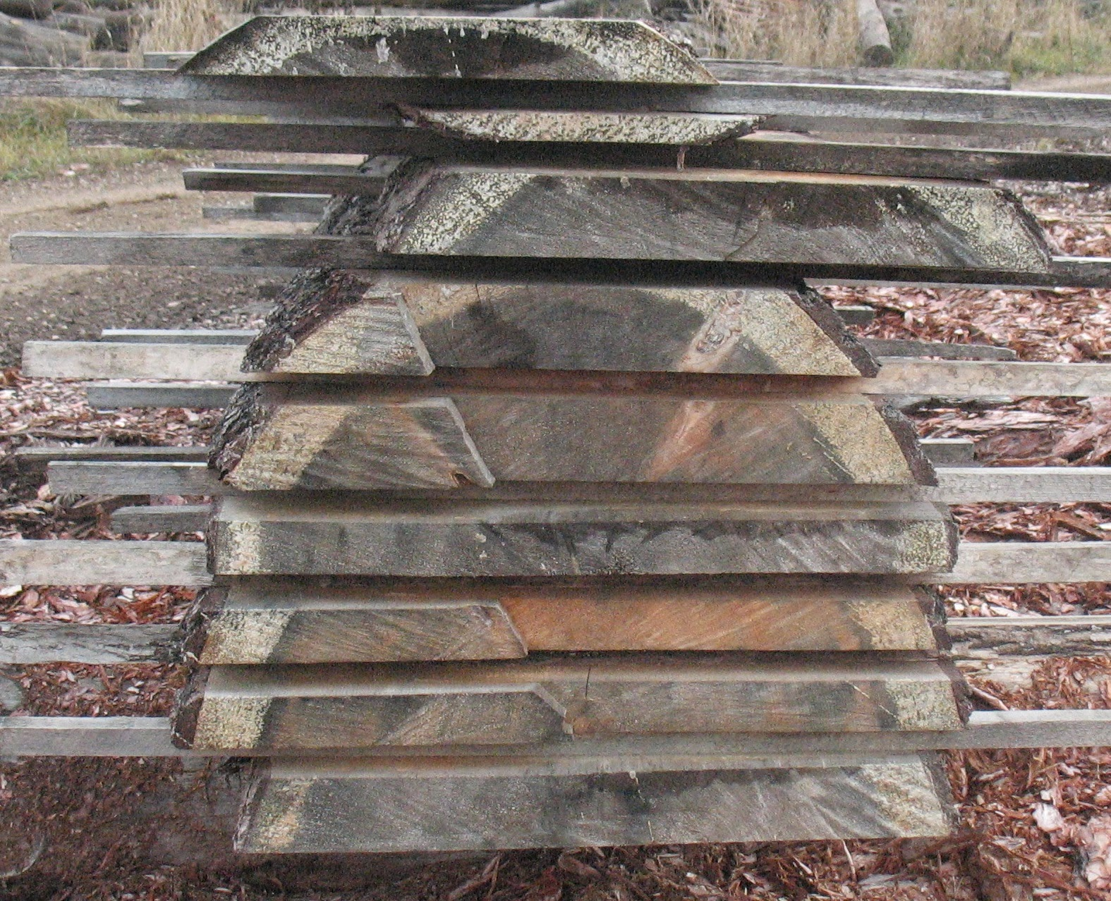 Wille Logging Lumber Amp Timber Log Slices