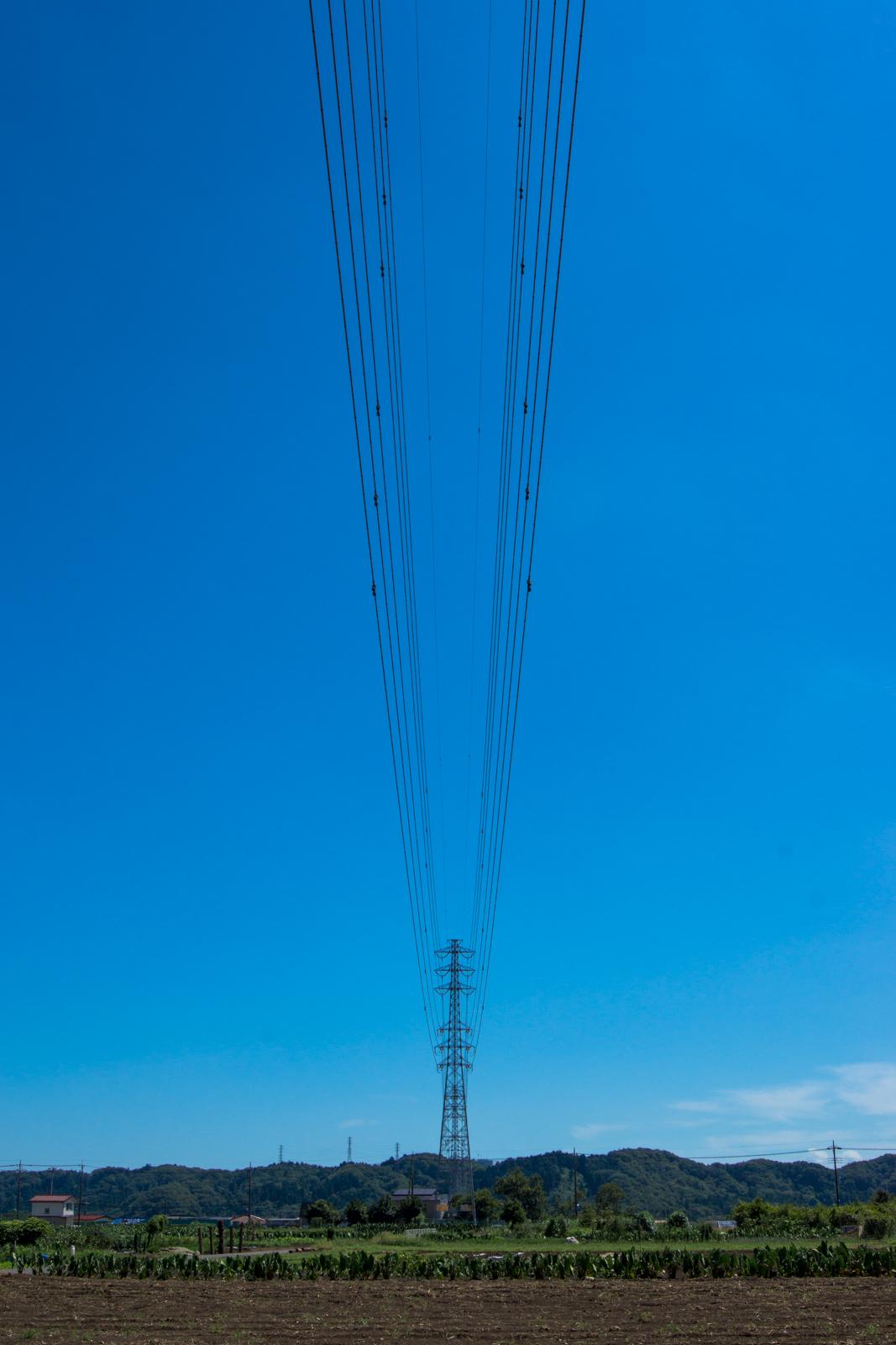 青空と電線の写真