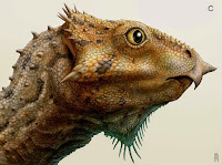 http://sciencythoughts.blogspot.co.uk/2014/12/a-ceratopsian-dinosaur-from-early.html