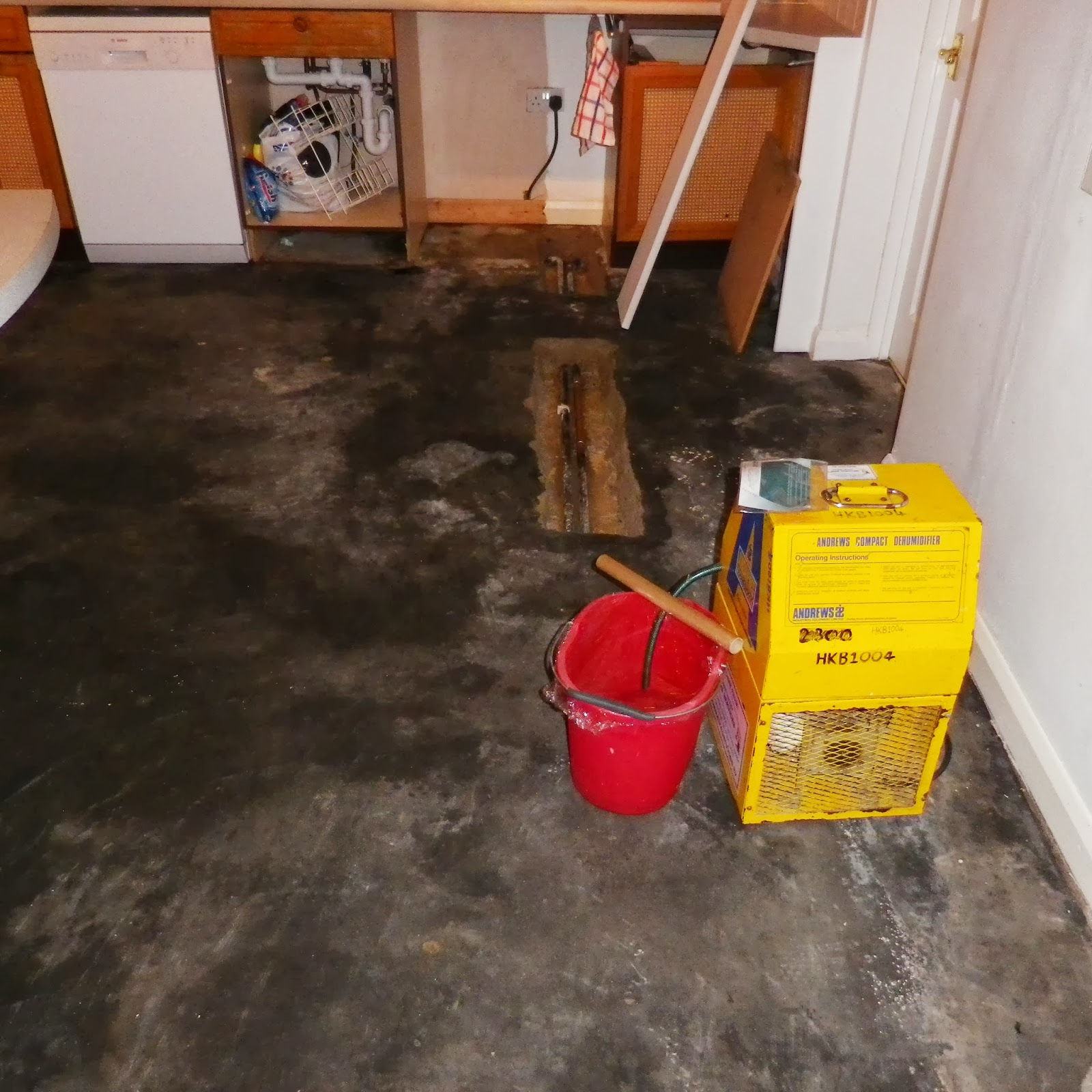 eMiddle of October and DynoRod arrived to fill the dried out holes in the screed . They lagged the pipes and added almost all the Screed mix they had and ... & Travel and Events.: Leaking Pipe - Levellling Screed helps save ...