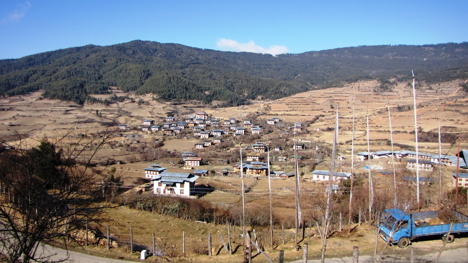 major environmental issues in bhutan It has formulated a medium-term strategy—bhutan  are other issues to be addressed at  urbanisation strategy consists of two major.