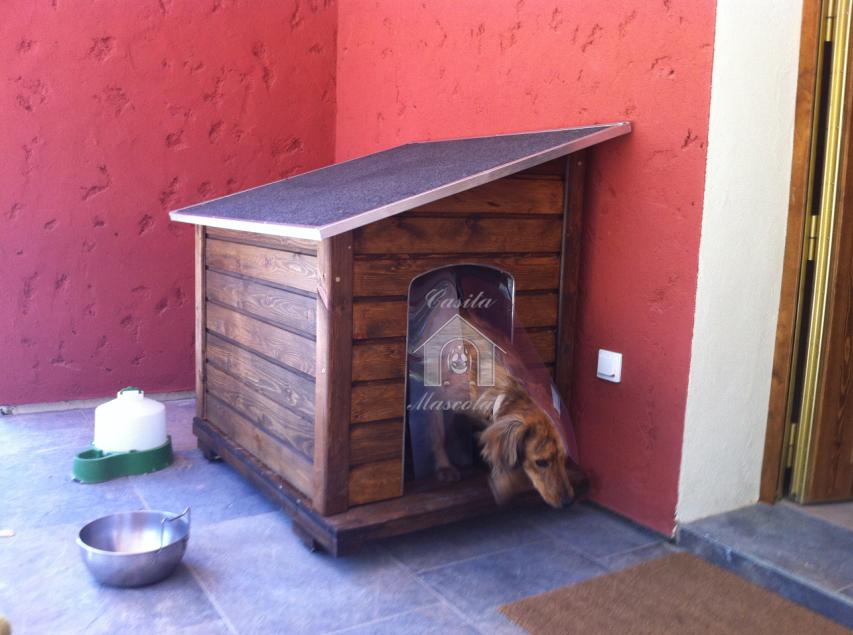 Pienso en perros y gatos casetas para perros y gatos - Caseta para perro grande ...