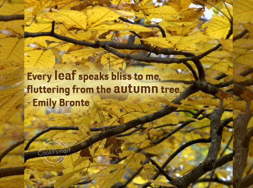 Autumn posters picture autumn quotes and sayings1 m4hsunfo