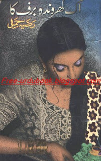 Ek Gharonda Barf Ka by Razia Jameel