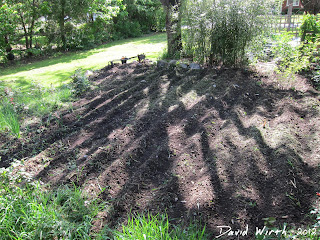 till rows in garden, spacing, how to, size