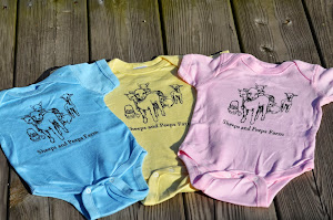 Tees and Onsies SALE!