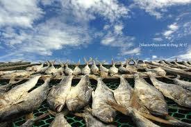 Το πάστωμα των ψαριών
