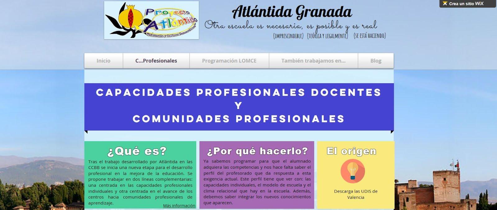Capacidad Profesional Docente-Granada