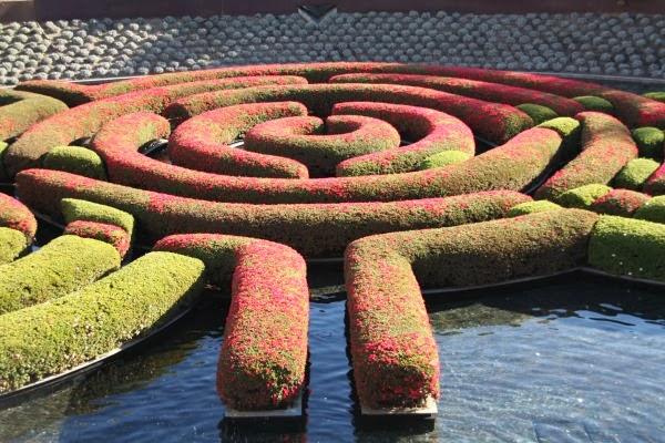 Laberinto de azaleas, Jardín del Centro Getty. L.A.