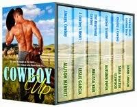 COWBOY UP Boxed Set