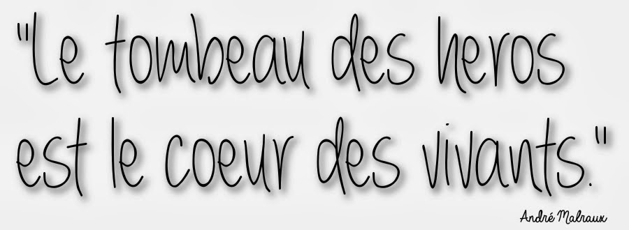 http://bouquinsenfolie.blogspot.fr/2013/11/les-heros.html