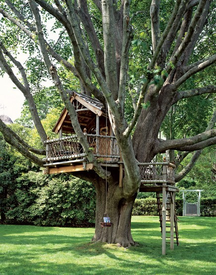 Turning a house into a home creating beauty on a budget for Awesome tree house plans