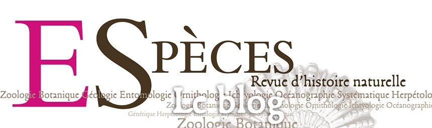 Espèces - le blog