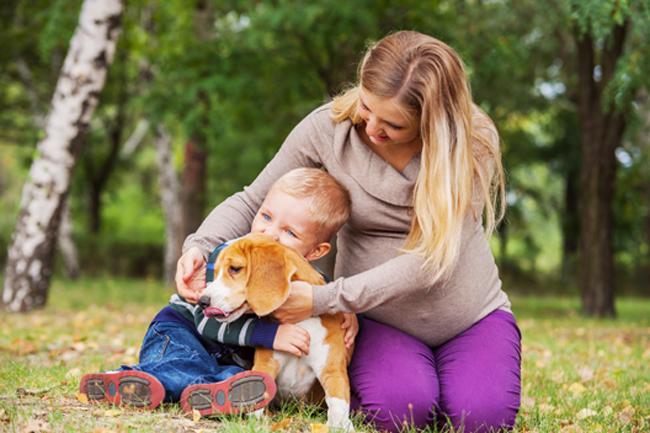 Czy kobieta w ciąży powinna unikać psów?