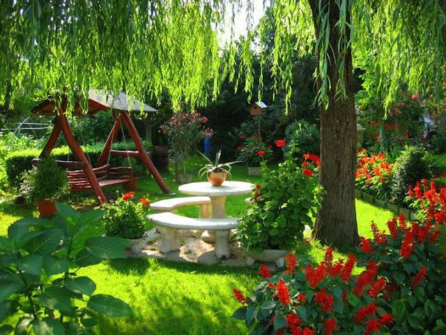 Arte y jardiner a como dise ar un jardin for Disenar jardines