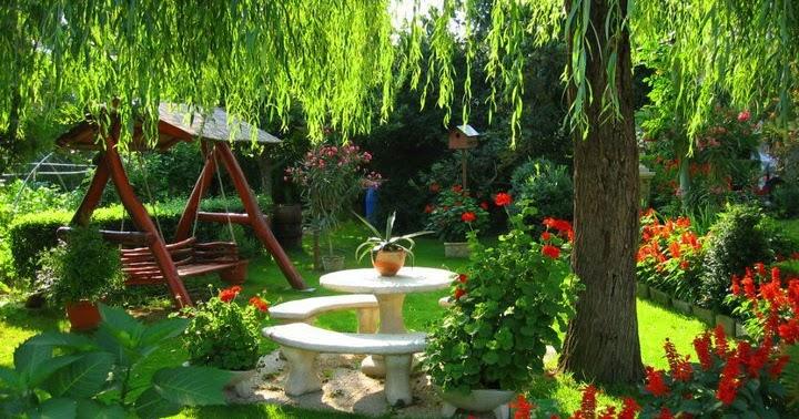 Arte y jardiner a dise o de jardines como dise ar un jardin for Diseno de jardines 3d 7 0 keygen