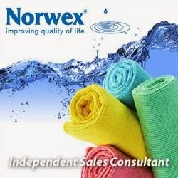 http://www.norwex.biz/pws/amystrait/tabs/home.aspx