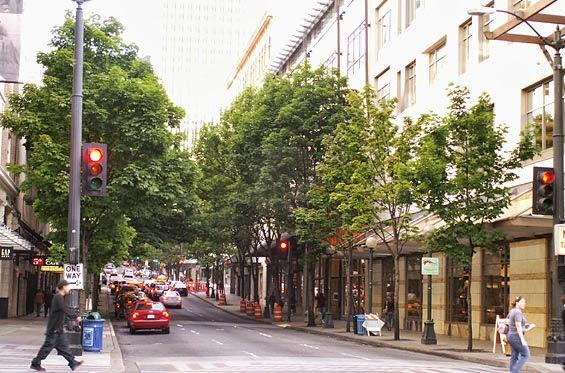 Resultado de imagen para arboles en ciudades