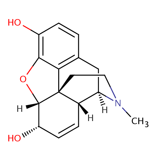 Gambar Struktur Morfin (Morphine)