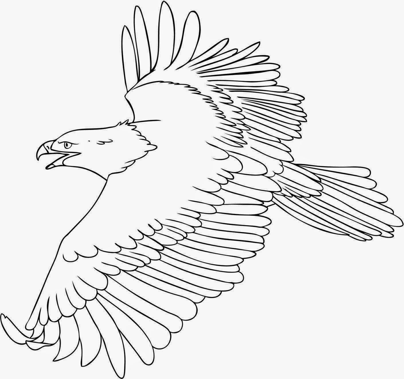 Dibujos para Colorear: Dibujos de aguilas