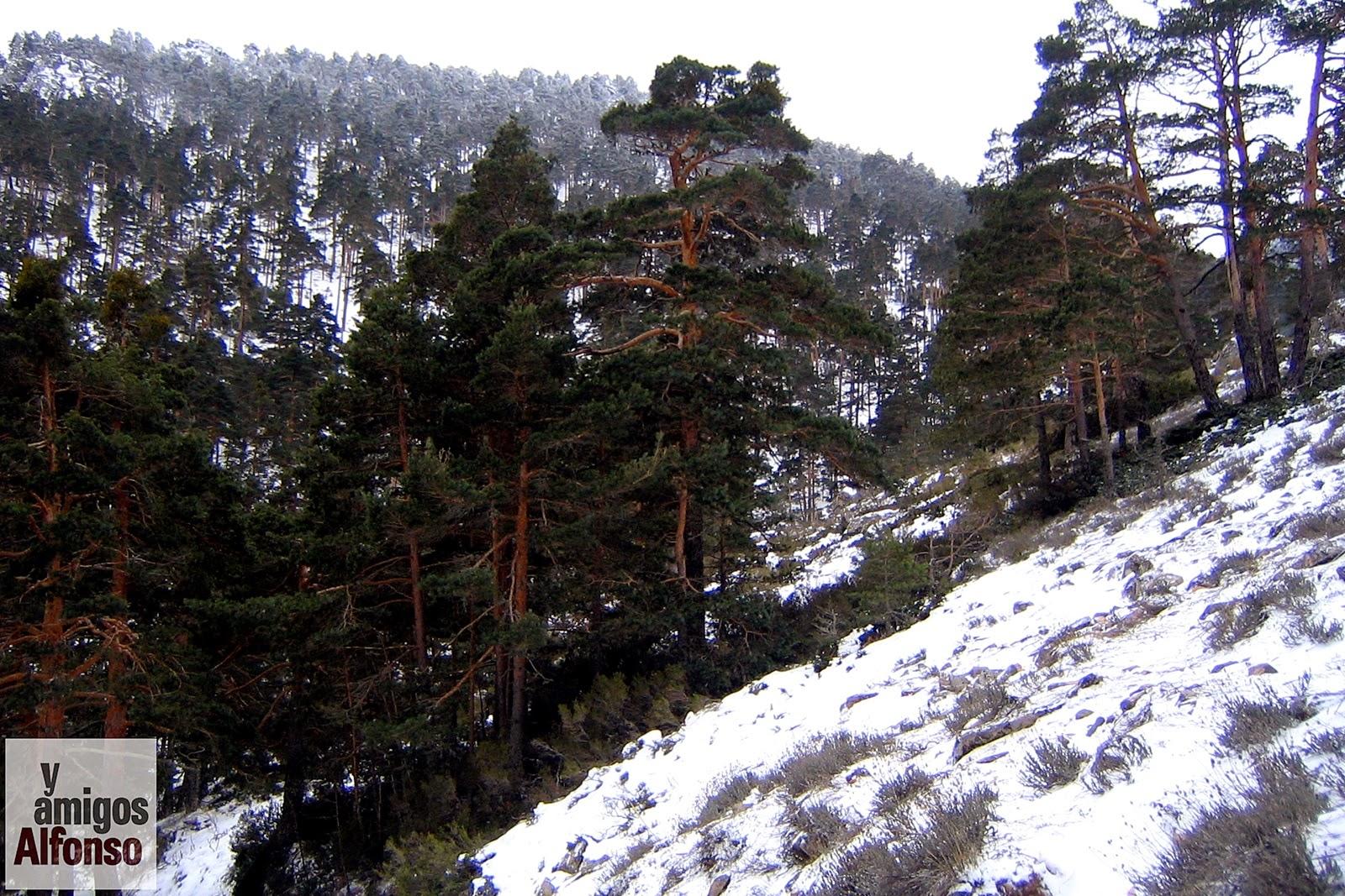 Nieve en San Rafael - Alfonsoyamigos