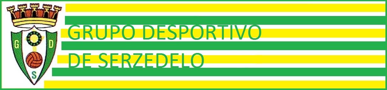 Grupo desportivo de Serzedelo