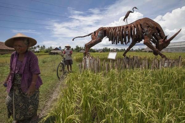 DUA petani berjalan melintasi ukiran lembu jantan di Kampung Nitiprayan, Bantul dekat Yogyakarta, Indonesia kelmarin.