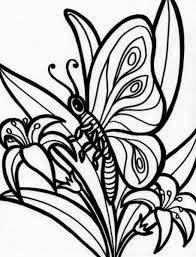 Mewarnai gambar bunga dan kupu-kupu untuk anak 2
