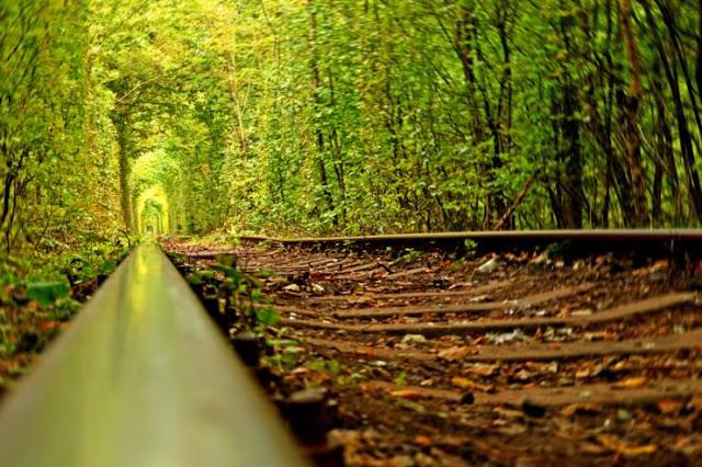 terowong cinta ukraine, tunnel of love ukraine, tempat menarik di dunia, permandangan cantik,