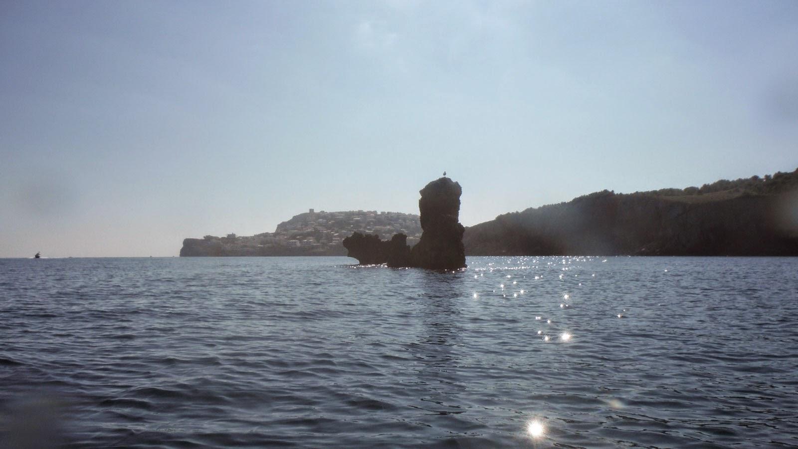 Illes de la Costa Brava - El salpatx a la clota (L'Escala)