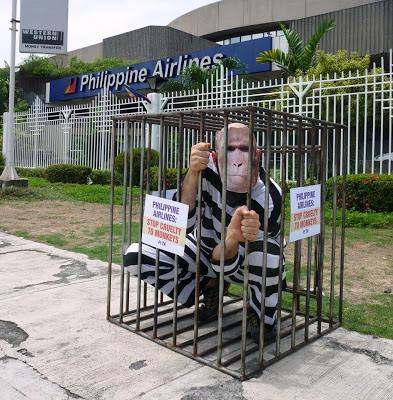 philippine airlines monkey shipment