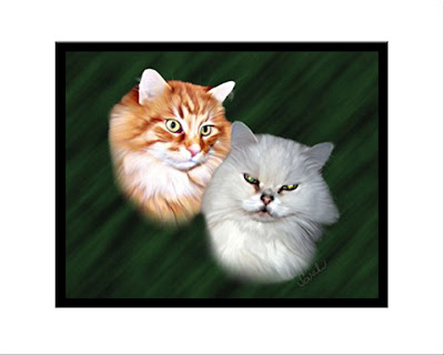 White Persian, Cat, Ginger Cat, Feline, Pet, Digital Painting, Hand Painted, Pet Portrait, Fine Art
