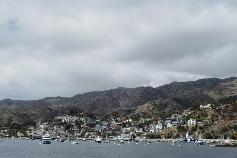 Download this Ferry For While Santa Catalina Island picture
