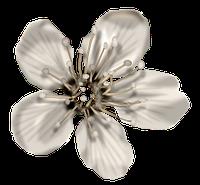 Blog de rafaelababy : ✿╰☆╮Ƹ̵̡Ӝ̵̨̄ƷTudo para orkut e msn, Brushes de flores