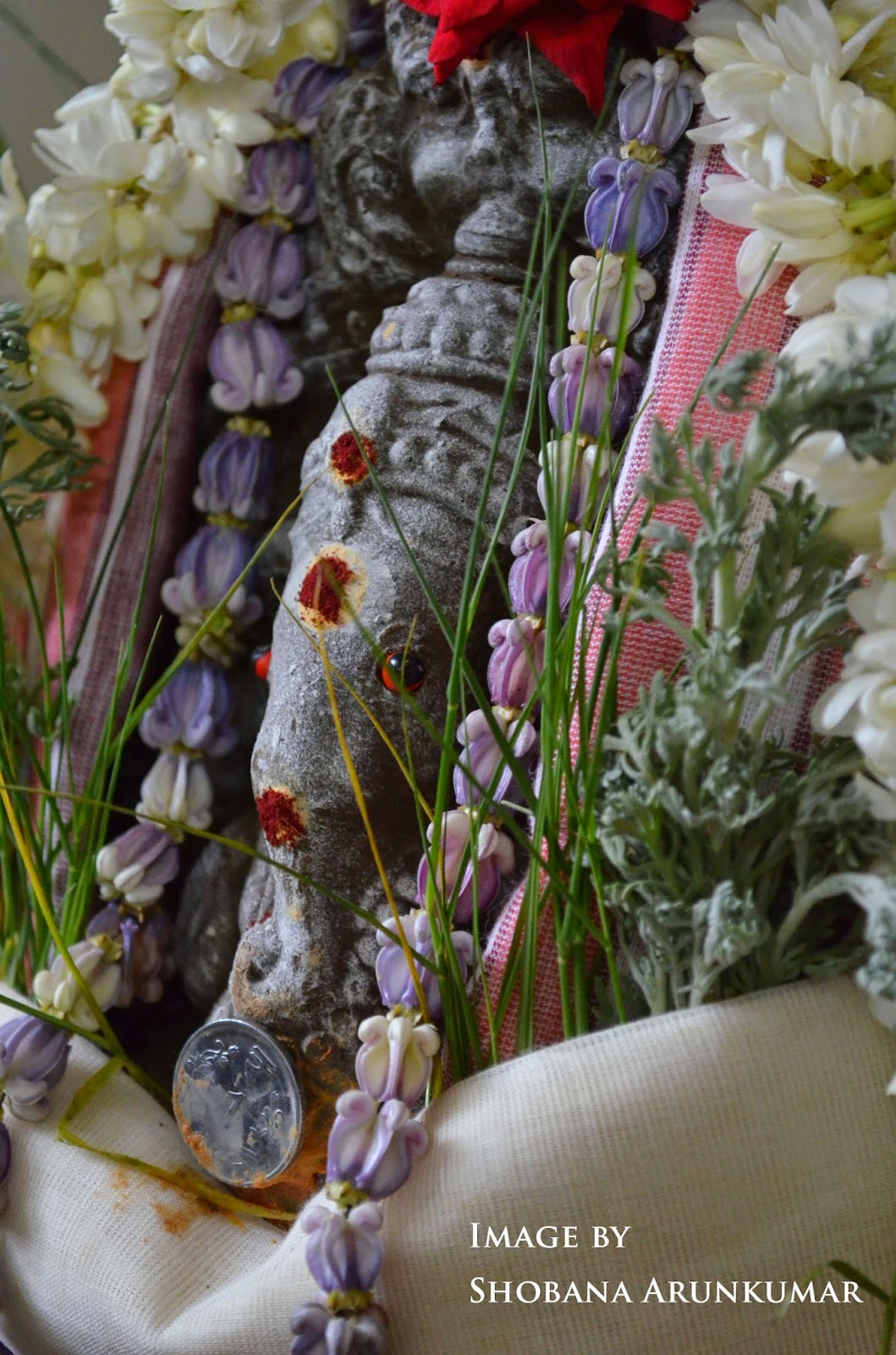 Ganesh chaturthi flowers may flower blog - Technically I Have Never Come Across Elai Kozhukattai There Is Ela Ada Elai Adai With Is A Kerela Sweet Make In The Same Say Which Has Chopped