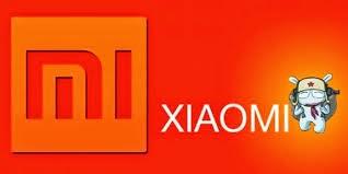 Xiaomi Go to Indonesia
