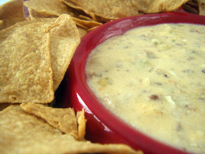 Snappy Gourmet: Spicy Sausage & Beer Cheese Dip