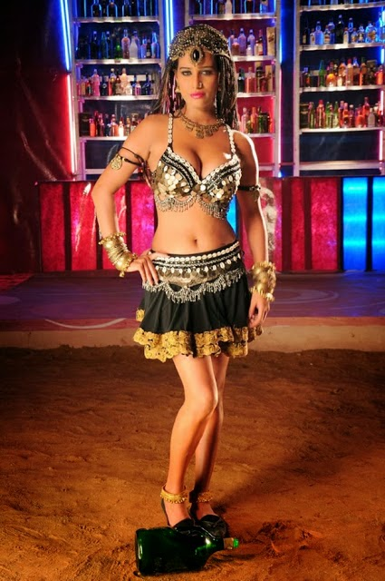 Nasha Fame Heroine Poonam Pandey Hot and Spicy hd Wallpapers